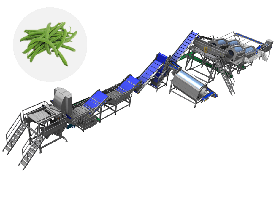 Line for green bean, Green bean processing, Food processing equipment