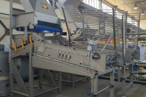 Corn husker for corn husking, removing of leaves, Husking, peeling of product, odlisťovanie kukurice, odlisťovač kukurice, sweet corn husker, husking machine, corn processing machine, sweet corn peeling machine, sweet corn husking machine,